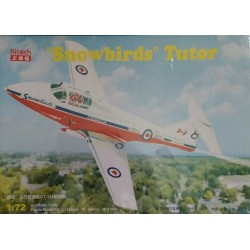 "Cod.kit141 ""SNOWBIRDS"" TUTOR Esc.1/72"
